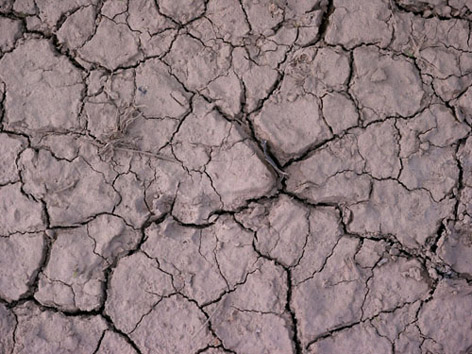 Catlamis toprak